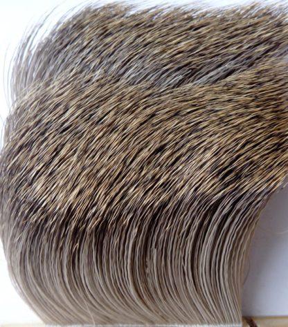 poils chevreuil naturel
