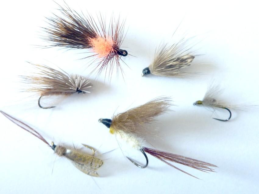 mouche de pêche
